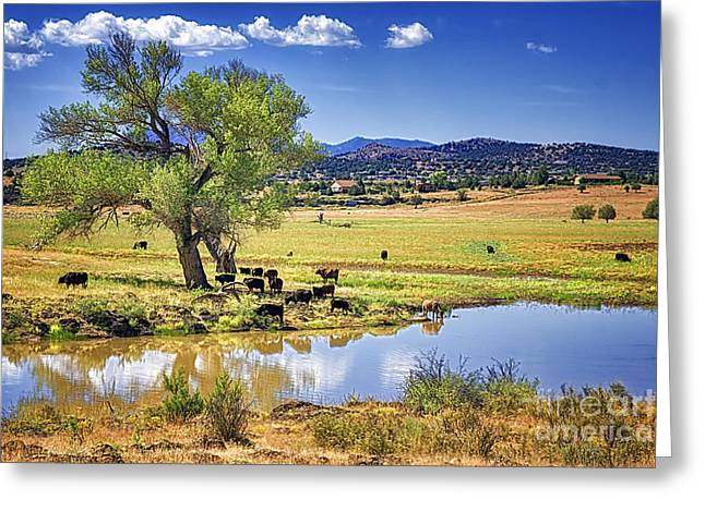 Mountain Valley Greeting Cards - Beside Still Waters Greeting Card by Priscilla Burgers