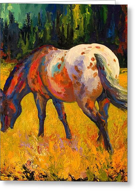 Equine Greeting Cards - Best End Of An Appy Greeting Card by Marion Rose