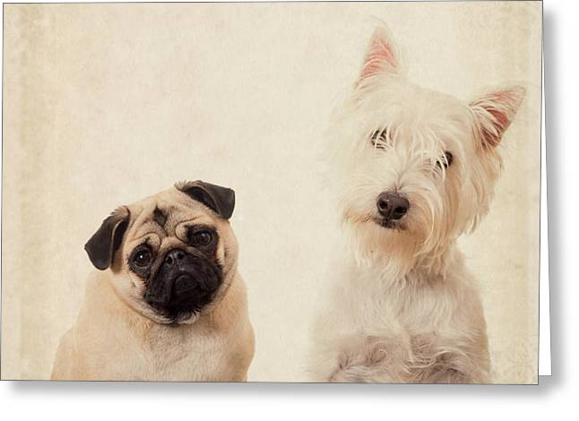 Best Friends Forever Greeting Card by Edward Fielding