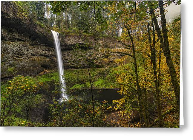 Best Of Silver Falls Greeting Card by Mark Kiver