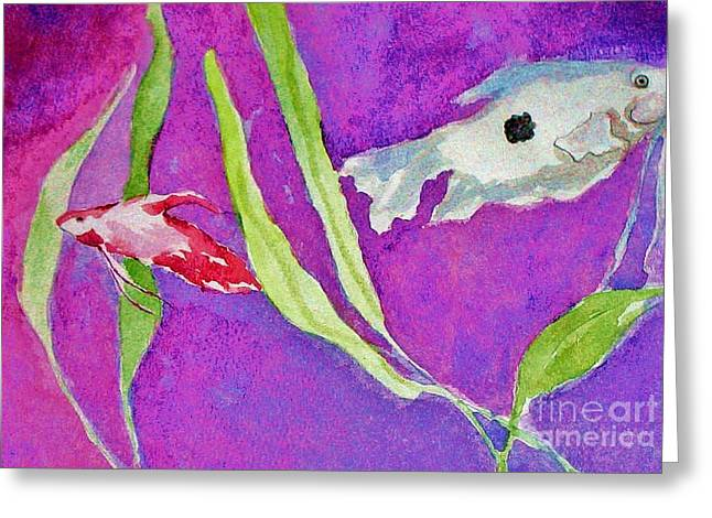 Betta Greeting Cards - Betta and Gourami Greeting Card by Emily Michaud