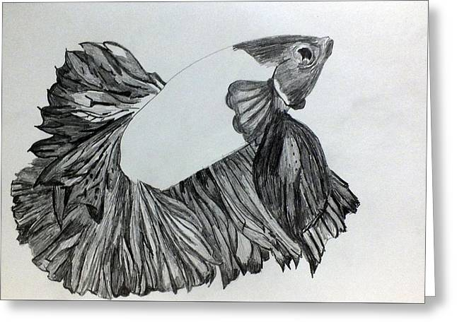 Aquatic Greeting Cards - Betta Sketch Greeting Card by Kimmary I MacLean