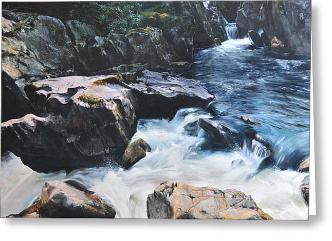 Naturalistic Drawings Greeting Cards - Betws-y-Coed Waterfall Greeting Card by Harry Robertson