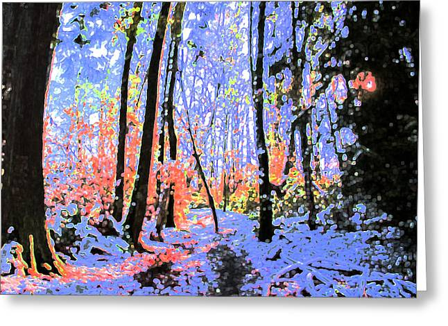 Bewitched Greeting Cards - Bewitched by Winter  Greeting Card by Barbara  White