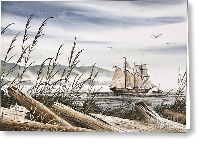 Tall Ship Canvas Greeting Cards - Beyond Driftwood Shores Greeting Card by James Williamson