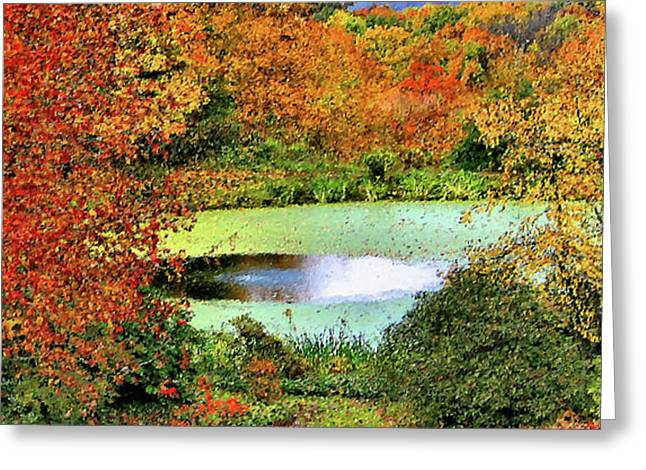 Akron Falls Greeting Cards - Beyond the Birch Pathway Greeting Card by Kristin Elmquist