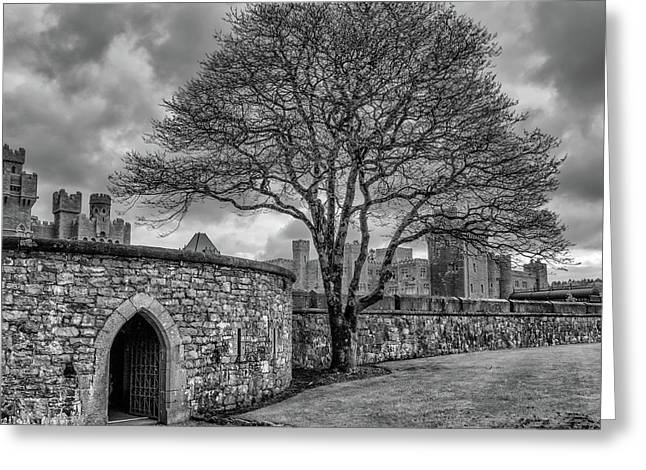 Beyond The Castle Walls Greeting Card by Chris Buff