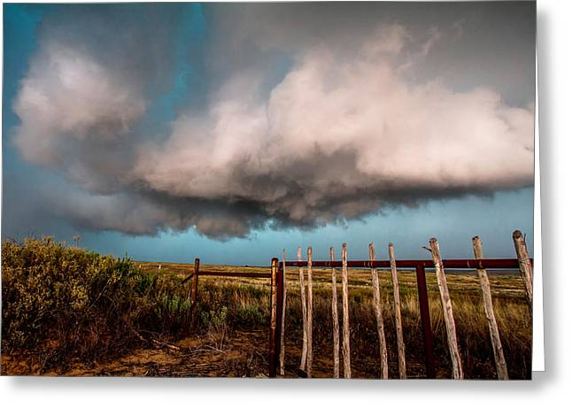 Storm Prints Photographs Greeting Cards - Beyond the Fence Greeting Card by Sean Ramsey