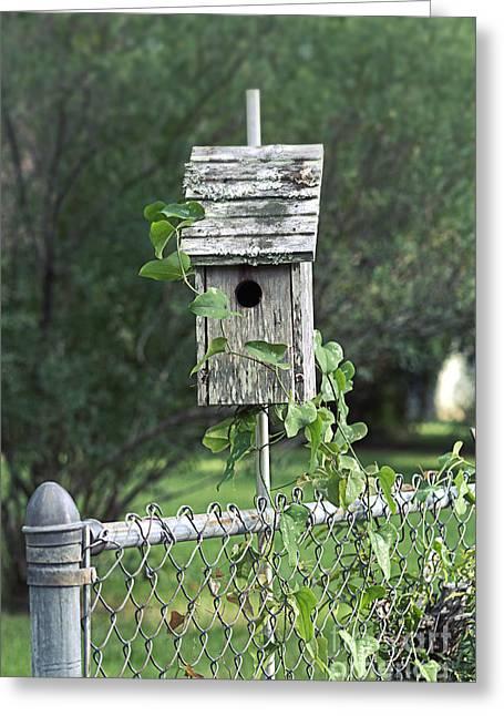 Beyond The Garden Gate  Greeting Card by Ella Kaye Dickey
