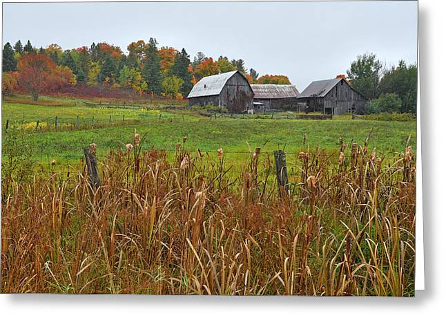 Beyond The Hill Greeting Card by Tony Beck