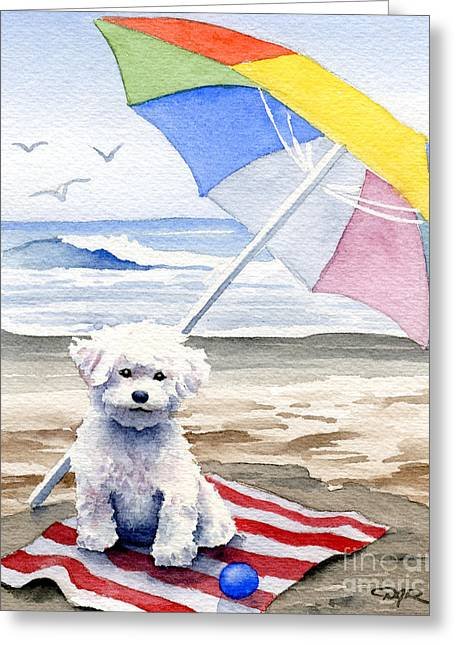 Toy Dog Greeting Cards - Bichon Frise At The Beach II Greeting Card by David Rogers
