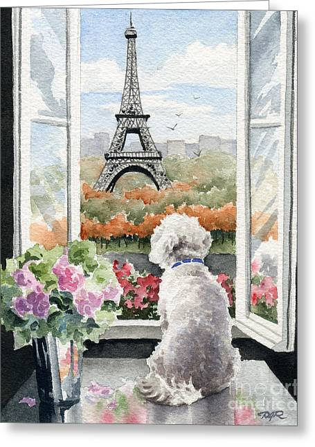 Toy Dog Greeting Cards - Bichon Frise In Paris Greeting Card by David Rogers