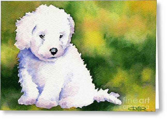 Toy Dog Greeting Cards - Bichon Frise Puppy Greeting Card by David Rogers
