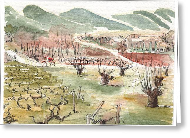 Bicycling Through Vineyards Greeting Card by Tilly Strauss