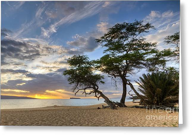 ; Maui Greeting Cards - Big Beach Maui Hawaii Sunset Greeting Card by Dustin K Ryan