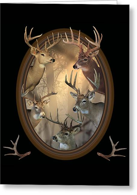 Out Of Frame Greeting Cards - Big Bucks Greeting Card by Shane Bechler