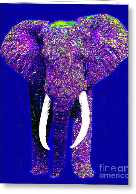 Happy Elephant Greeting Cards - Big Elephant 20130201m118 Greeting Card by Wingsdomain Art and Photography