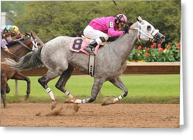 Race Horse Mixed Media Greeting Cards - Big Gray Greeting Card by John Guthrie