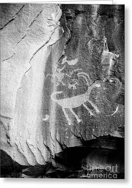 Shamanism Greeting Cards - Big Horn Sheep Petroglyph 2 - Nine Mile Canyon - Utah Greeting Card by Gary Whitton