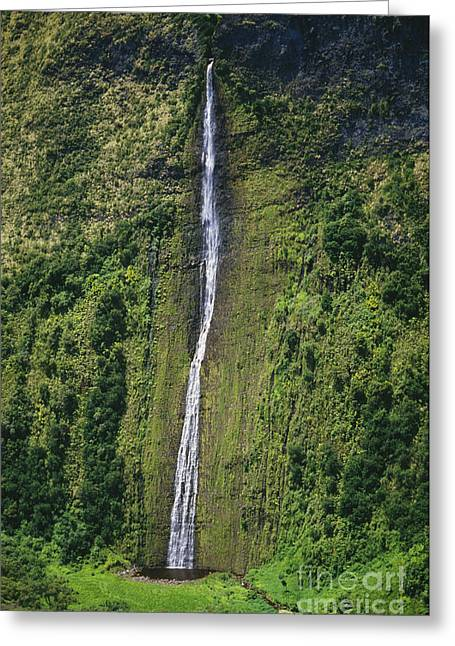 Hamakua Greeting Cards - Big Island Waterfall Greeting Card by Greg Vaughn - Printscapes