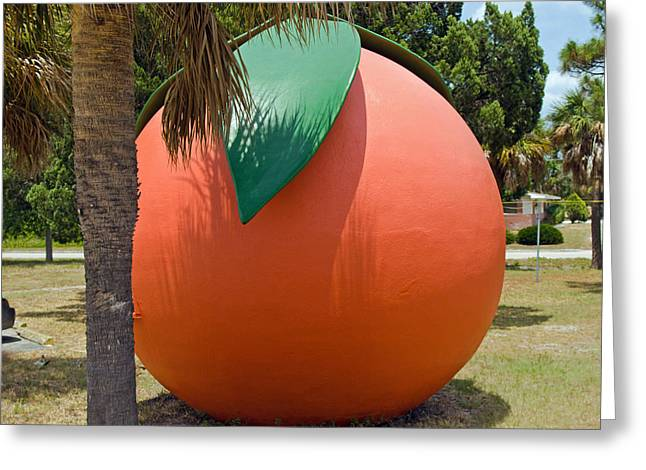 Big Orange At Melbourne On The East Coast Of Florida Greeting Card by Allan  Hughes