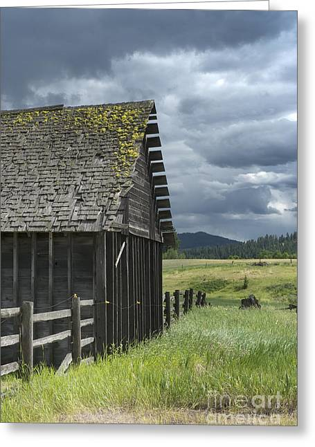 Old Cabins Photographs Greeting Cards - Big Sky Cabin Greeting Card by Sandra Bronstein