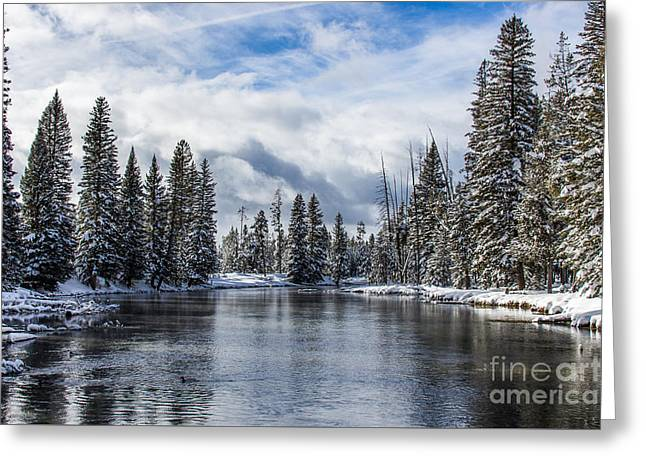 Rainbow Trout Greeting Cards - Big Springs in Winter Landscape Art by Kaylyn Franks Greeting Card by Kaylyn Franks