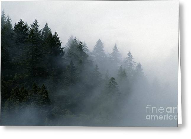 Craig Lovell Greeting Cards - Big-sur-7-15 Greeting Card by Craig Lovell