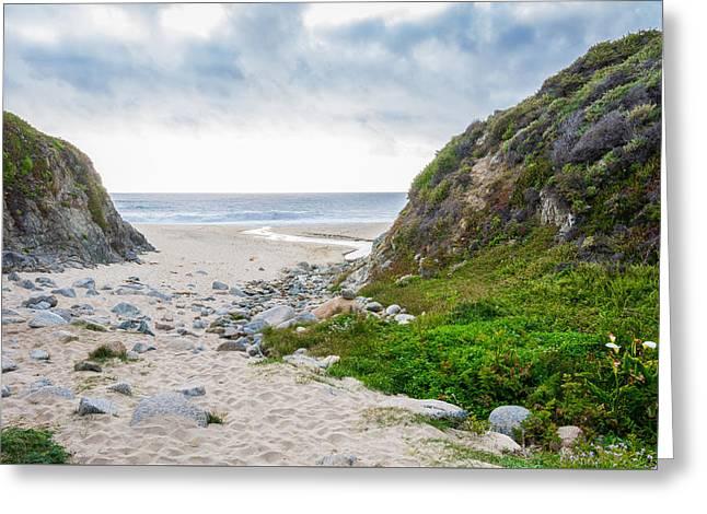 Big Sur Greeting Cards - Big Sur Beach Greeting Card by Cristi Canepa