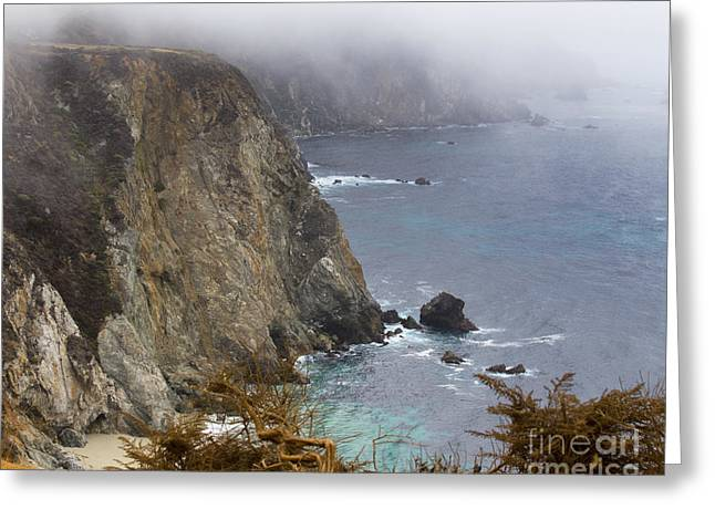 Big Sur California Greeting Cards - Big Sur California Greeting Card by TN Fairey