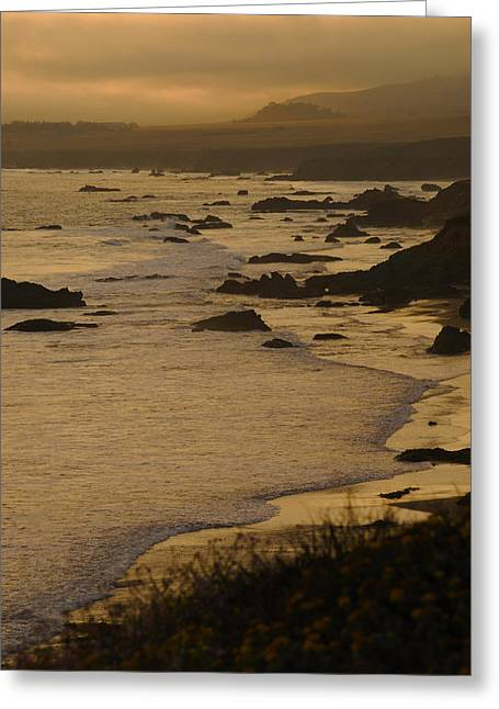 Big Sur Beach Photographs Greeting Cards - Big Sur Coastline Greeting Card by Don Wolf