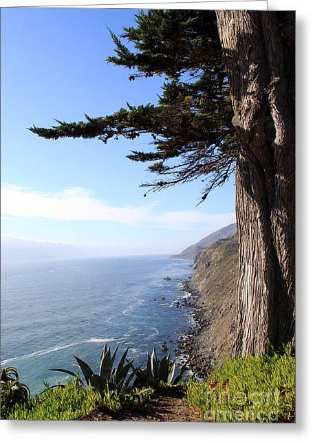 California Big Wave Surf Greeting Cards - Big Sur Coastline Greeting Card by Linda Woods