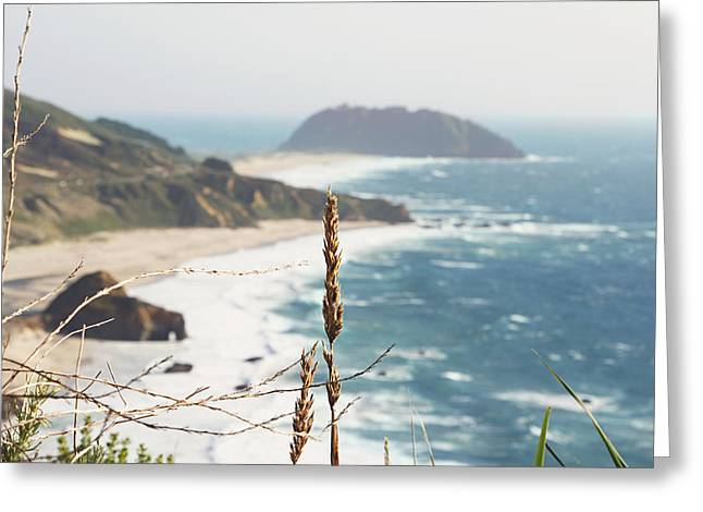Big Sur Beach Greeting Cards - Big Sur Shoreline  Greeting Card by Lina Tomasetti