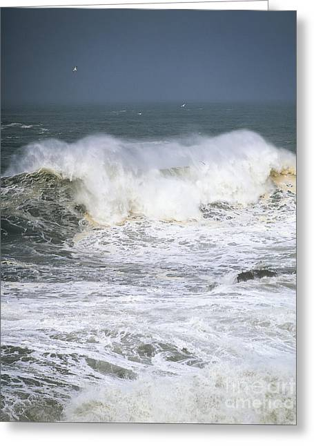 Winter Storm Greeting Cards - Big Waves Greeting Card by Robert Potts
