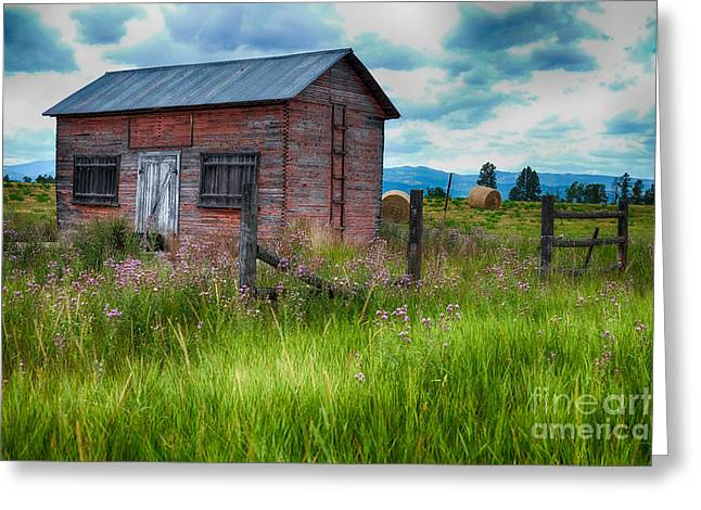 Outbuildings Greeting Cards - Bigfork Farm Shed Greeting Card by Vinnie Oakes