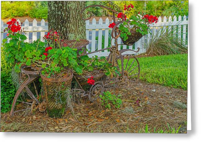 The Trees Greeting Cards - Bike Art Greeting Card by Dennis Dugan