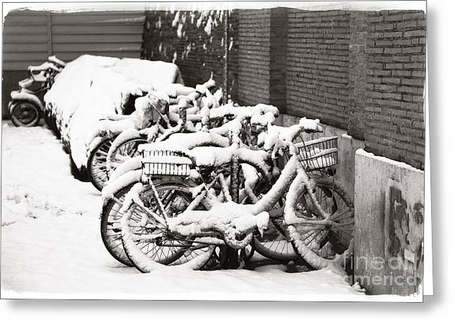 Bikes Parked And Full Of Snow Greeting Card by Stefano Senise