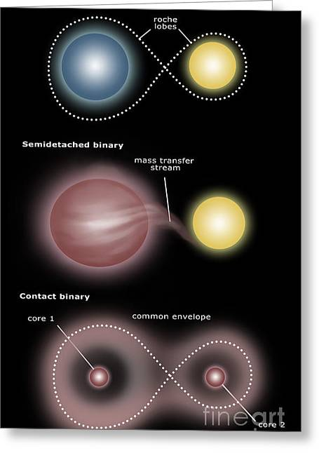 Transfer Greeting Cards - Binary Star Systems Greeting Card by Spencer Sutton