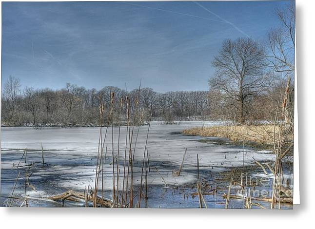 Hdr Landscape Greeting Cards - Binnie Woods Greeting Card by David Bearden
