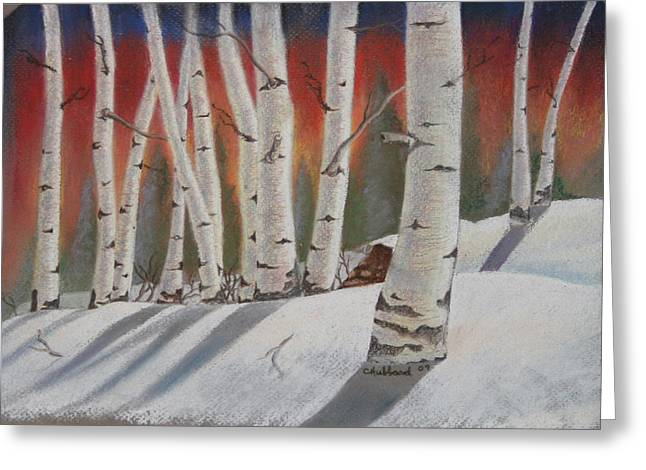 Birch Tree Pastels Greeting Cards - Birch trees in winter Greeting Card by Charles Hubbard