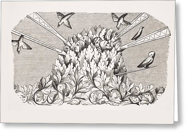 Apparel Greeting Cards - Bird-catching With A Machine Like A Greeting Card by Vintage Design Pics
