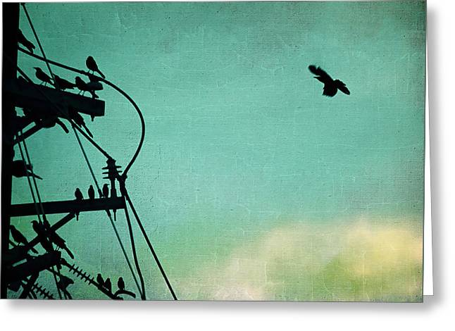 Flying Animal Greeting Cards - Bird City Revisited Greeting Card by Trish Mistric