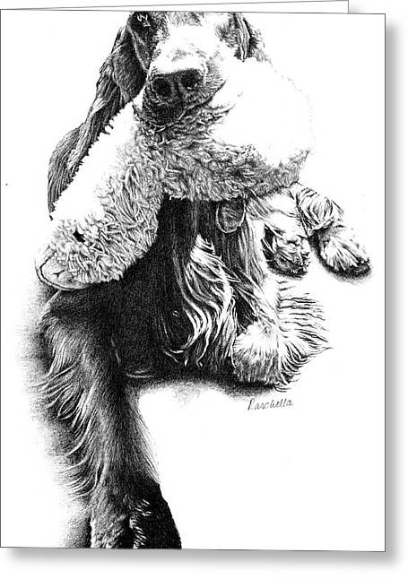 Hunting Bird Drawings Greeting Cards - Bird Dawg Greeting Card by Carole Raschella