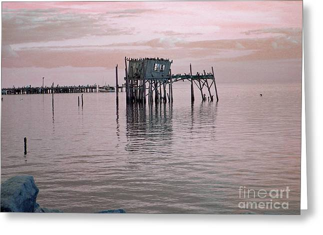 Bird Dock Greeting Card by Deborah Ferree