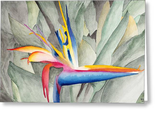 Watercolor Greeting Cards - Bird Of Paradise Greeting Card by Ken Powers