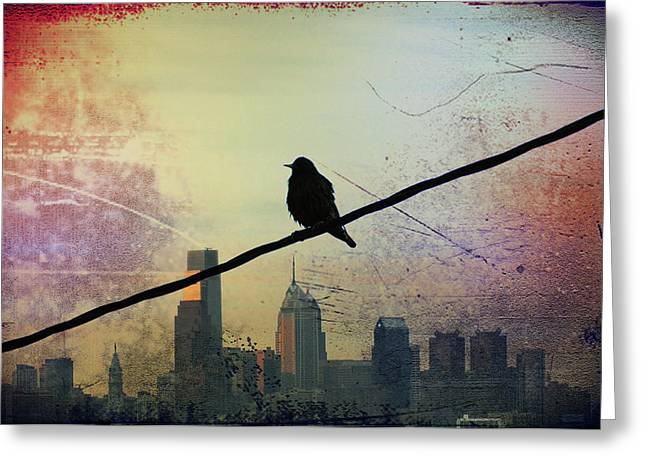 Bird On A Wire Greeting Card by Bill Cannon