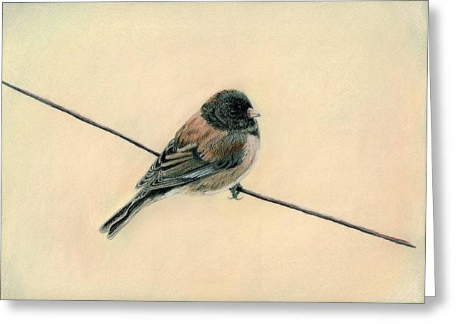 Oregon Pastels Greeting Cards - Bird on a Wire Greeting Card by Carla Armbrust
