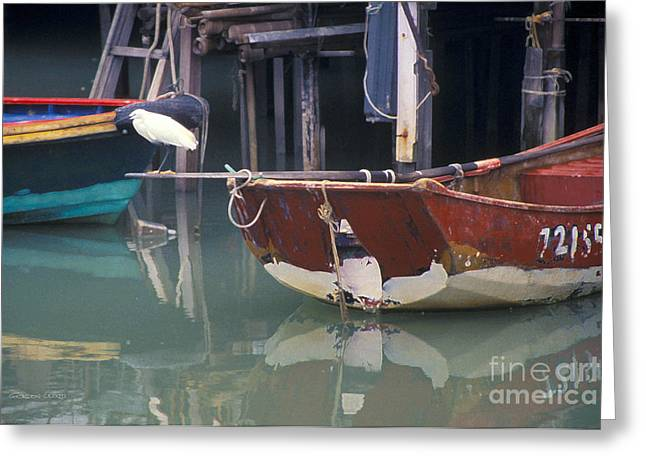 Bird On Boat Oar - Hong Kong Greeting Card by Gordon Wood