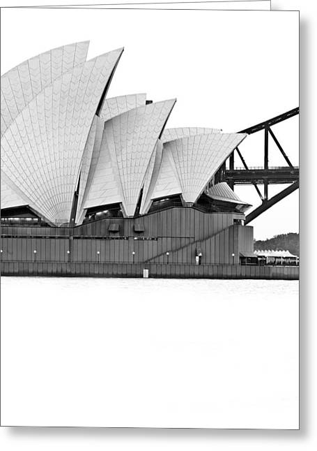 Landmark And Bridges Greeting Cards - Bird On The Harbour Greeting Card by Az Jackson