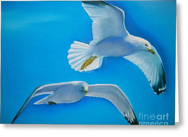 Flying Seagull Paintings Greeting Cards - Birds Eye View Greeting Card by Lacey Wingard
